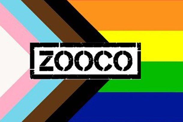 Zoo Co logo on a rainbow flag background